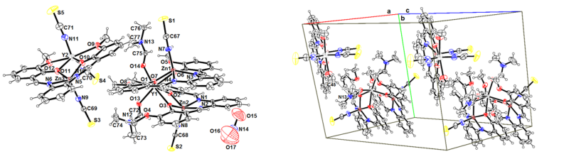 Co-crystal structure of a dinuclear (Zn-Y) and a trinuclear (Zn-Y-Zn